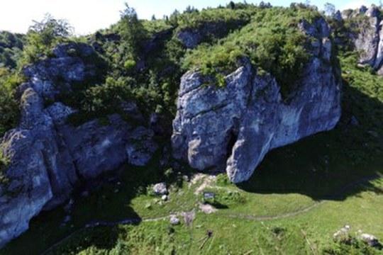 Il più antico DNA di Neandertal dell'Europa centro-orientale